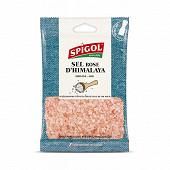 Spigol sel rose de l'himalaya sachet 90g