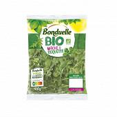 Bonduelle salade mâche & roquette bio sachet 100g