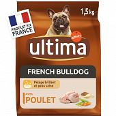 Ultima french bulldog 1.5kg
