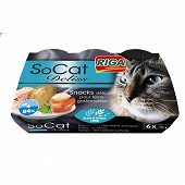 Riga socat deliss thon-coquille St Jacques x6