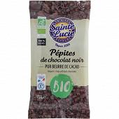Sainte lucie pépites de chocolat bio 125g