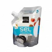 Salines d'Einville sel fin iodé doypack 450g