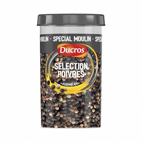 Ducros mélange spécial moulin 100g