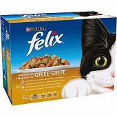 Felix sachets fraicheur émincés en gelée volaille légumes 12 x 100g
