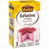 Vahiné gélatine en poudre 18g