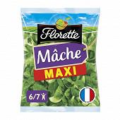 Florette salade mâche maxi format sachet 270g