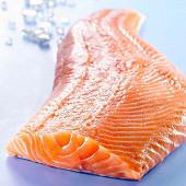 Filet de saumon