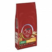 PURINA ONE Medium Maxi Active croquettes pour chiens adultes Au Poulet et Riz - 7kg