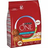 Nestle purina one chien medium maxi junior poulet 2.5kg