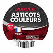 Asticots 4 couleurs gm