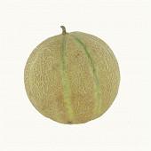 Melon charentais jaune bio