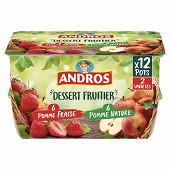 Andros dessert de pomme nature et pomme fraise 12x100G