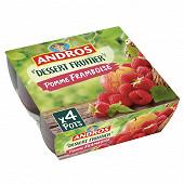 Andros dessert fruitier pommes framboises 4x100g