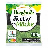 Bonduelle salade feuilles de mâche sachet 100g