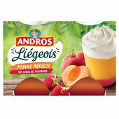 Andros spécialité de fruits de pomme et d'abricot sur coulis de framboise et crème fouettée 4x100g