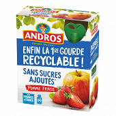 Andros gourde pomme fraise ssa 4x90g