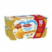 Materne ssa pomme/pomme poire/pomme banane mangue 16x100g 1.6kg