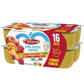 Materne ssa pomme/pomme framboise fraise/pomme pêche abricot 16/100g 1.6kg