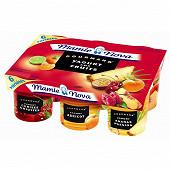 Mamie Nova gourmand yaourt aux fruits 6x150g