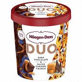 Haagen-dazs pot duo dark choc & salted car 355g