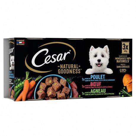Cesar natural goodness boites en terrines pour chien adulte 3 variétés